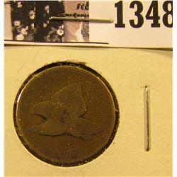 1348 . 1858 Flying Eagle Penny