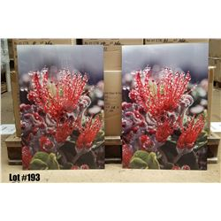 "Qty 2 ""Ohia in the Rain"" by William Weaver, Metal Print, 16X24 each panel"