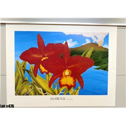 """Hawaii The Orchid Isle"" by Powell, Paper, 33"" x 25"" (qty 5)"