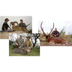 Hunt Package - Argentina Big Game Hunt Sponsored by: Anuritay Ranch