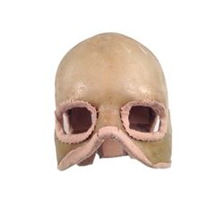 Underworld: Awakening Protoype Skull Movie Costumes
