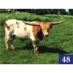COWBOY REMEDY EOT