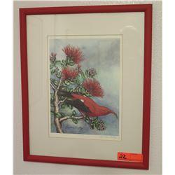 """I'iwi on Ohia Lehua"" Watercolor, Kristen Kolsky, Signed 17.5"" X 21.5"""