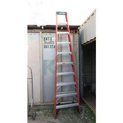 Tall Werner Work Ladder