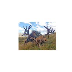 Hunt of a Lifetime, Gun for a Cause Safari Wish Hunt Benefactor