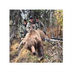 Alaska Brown Bear/ Black Bear Combo Hunt