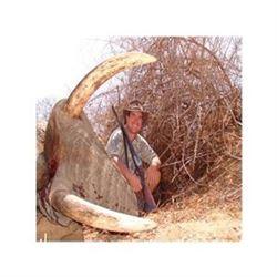 African Bull Elephant Hunt