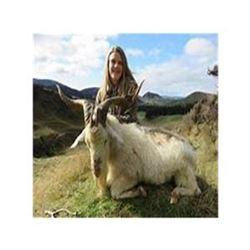 New Zealand 3 Day Alpine Goat