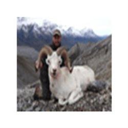 Northwest Territories Dall Sheep Hunt