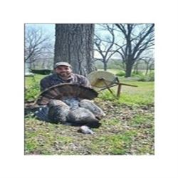 Illinois Spring Wild Turkey Hunt