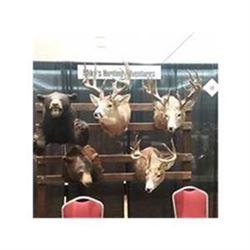 Saskatchewan Whitetail Deer Hunt