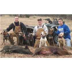 Florida Hog hunt for up to 4 people