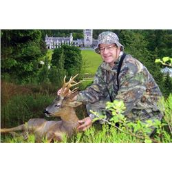 Spring Roe Deer hunt in Scotland. One hunter two Roe Deer.Includes $500 credit on airfare to and fro