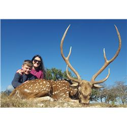 Y.O. RANCH: 2-Day Exotic Game Or Whitetail Deer Hunt for Two Hunters and Two Non-Hunters in Texas -