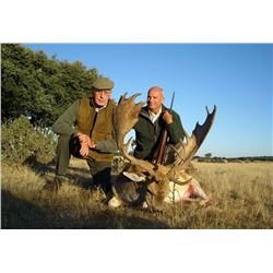 HUNTINSPAIN: 4-Day Red Deer, Fallow Deer OR Mouflon Hunt for One Hunter and One Non-Hunter in Spain