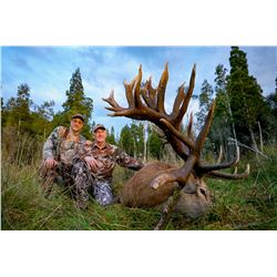 WILDERNESS QUEST: 6-Day Big Game Hunt for One Hunter and One Non-Hunter in New Zealand