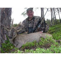 HUNT TRIP SPAIN: 4-Day Roe Deer Hunt for Two Hunters and Two Non-Hunters in Spain - Includes Trophy