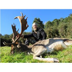 KURANUI: 5-Day Fallow Buck and Red Stag Hunt for Two Hunters in New Zealand - Includes Trophy Fees
