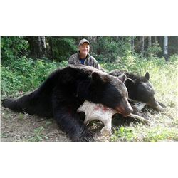 NORTH ALBERTA: 6-Day Black Bear Hunt for Two Hunters in Alberta, Canada - Includes Trophy Fees
