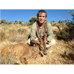 GREAT SPANISH HUNTS: 4-Day European Fallow Deer OR Roe Deer Hunt for Two Hunters in Spain