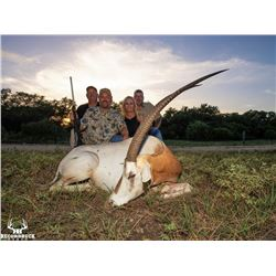 RECORDBUCK: 3-Day Exotic Trophy Hunt for One Hunter and One Non-Hunter in Texas - Includes Trophies
