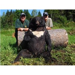 LINK'S WILD: 7-Day Asian Black Bear Hunt for One Hunter in Russia - Includes Trophy Fee