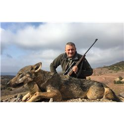SAFARI INTERNATIONAL: 5-Day Wolf Hunt for One Hunter and One Non-Hunter in Macedonia