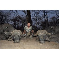 DZOMBO: 7-Day Cape Buffalo/Crocodile Hunt for One Hunter in Zambia-Includes Trophy Fees & Taxidermy