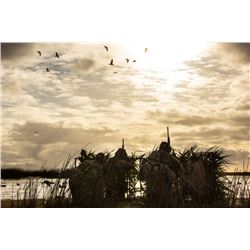 POINTER OUTFITTERS: 4-Day Dove, Duck and Perdiz Wingshooting for Four Hunters in Santa Fe, Argentina