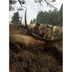HEAVEN'S GATE: 7-Day Elk and Mule Deer, Bear, Wolf OR Mountain Lion BOW Hunt for Two in Idaho