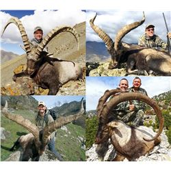 SHIKAR: 7-Day Ibex Hunt for Two Hunters in Turkey, Mongolia or Spain -