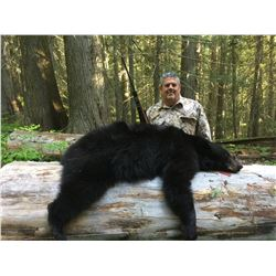 FLYING B: 5-Day Black Bear Hunt for Two Hunters in Idaho - Includes Trophy Fees