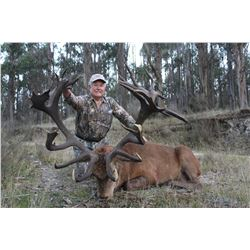 PORONUI: 5-Day Red Stag Hunt for One Hunter with Craig Boddington in New Zealand - Includes Trophy F