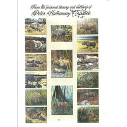 FIONA CAPSTICK: One-Of-A-Kind Peter Hathaway Capstick Personal Publication & Signed/Numbered Guy Coh