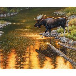 "CYNTHIE'S WILDLIFE: ""Evening Crossing"" - Original Oil on Canvas by Wildlife Artist Cynthie Fisher"