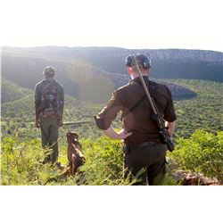 ARU GAME LODGE: 8-Day Plains Game Safari for Two Hunters and Two Non-Hunters in Namibia - Includes T