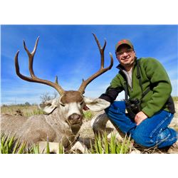 HUNT CONEXION: 7-Day Multi-Species Deer, Predator and Quail Hunt for One Hunter in Old Mexico - Incl