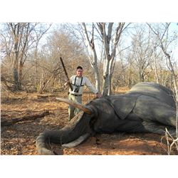 JIMBA SAFARIS: 10-Day Non-Exportable Elephant Hunt for One Hunter and One Non-Hunter in Zimbabwe