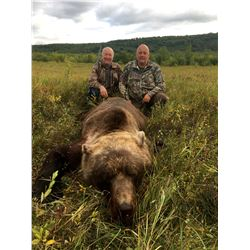 LINK'S WILD: 5-Day Kamchatka Brown Bear Hunt for One Hunter in Russia - Includes Trophy Fee