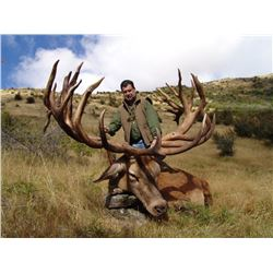 CARDRONA: 4-Day Red Stag Hunt for One Hunter and One Non-Hunter in New Zealand - Includes Trophy Fee
