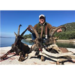 SAFARI INTERNATIONAL: 5-Day Kri-Kri Ibex Hunt for One Hunter and One Non-Hunter in Greece - Includes