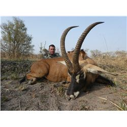 CLUB FAUNE: 7-Day Western Buffalo or Roan Hunt for One Hunter and One Non-Hunter in Cameroon
