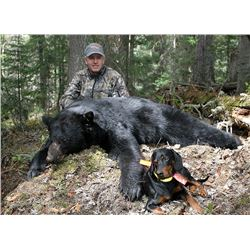 (NEW) 6-Day Black Bear and Wolf Hunt for One Hunter in BC, Canada - Includes Trophy Fees
