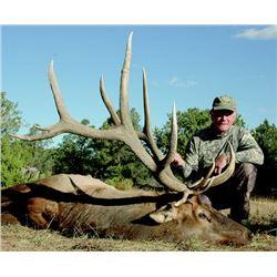 Acoma Pueblo 'Governor's Tag' for Rocky Mountain Elk