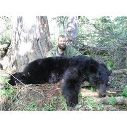 6-day British Columbia Black Bear Hunt for One Hunter