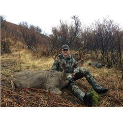 3-day/4-night Alaska Sitka Blacktail Deer Hunt for Two Hunters