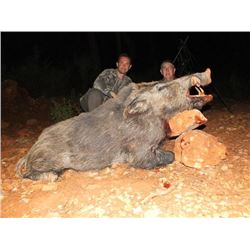 5-day Turkey Eurasian Wild Boar Hunt 1 Hunter and 1 Observer