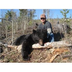5-day British Columbia Black Bear Hunt for One Hunter