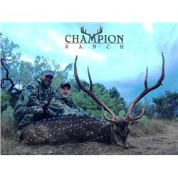 4-day/3-night Texas Cast and Blast Trip and Axis Deer Hunt for Two Hunters and Two Non-Hunters