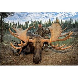 10-day Trophy Yukon Moose, Black Bear, Wolverine and Wolf Hunt for One Hunter